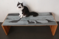 plesiosaur table w/ cat